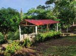 | Bienes Raices Republica Dominicana