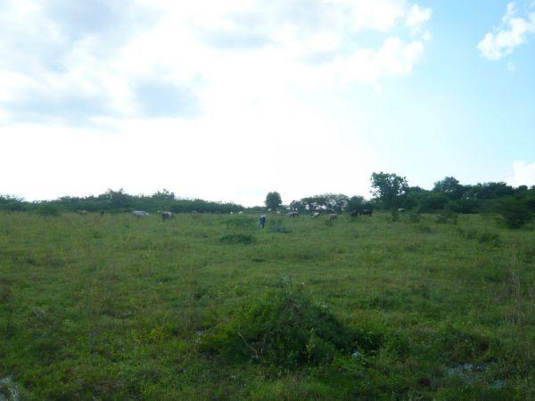 Excelente oportunidad de inversión | Bienes Raices Republica Dominicana